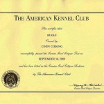 Bugle's GCC Cert (A)